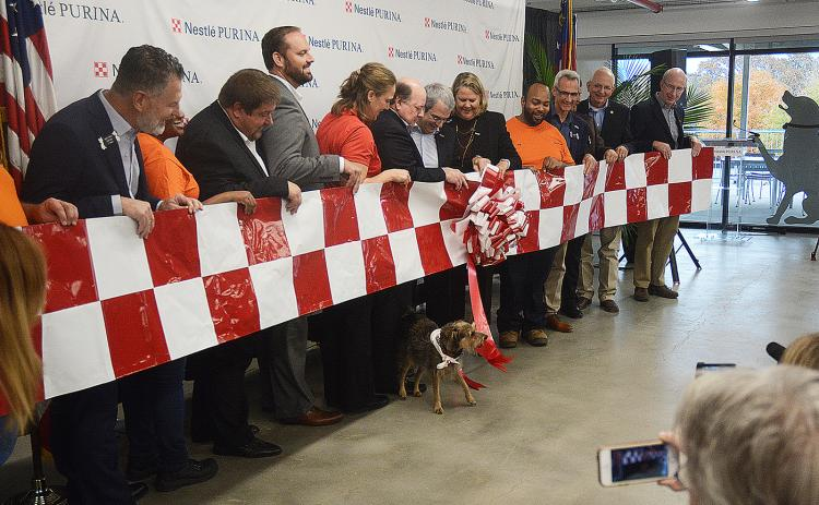 Sunshot from file - City, state and county officials along with representatives from Nestlé-Purina watch as a dog pulls the ribbon, officially opening the company's Hartwell production facility in November.